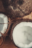 Kokosnuss auf Tabelle Stockfoto