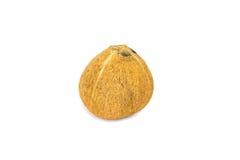 Kokosnuss auf weißem Hintergrund Stockfoto
