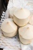 Kokosnuss für Sale Stockfotos