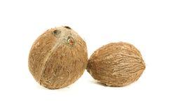 Kokosnuss getrennt Lizenzfreies Stockbild