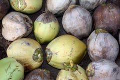 Kokosnuss-Hintergrund Stockfotografie