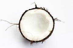 Kokosnuss im Abschnitt Stockbild