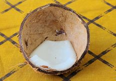 Kokosnuss im Shell Stockbild
