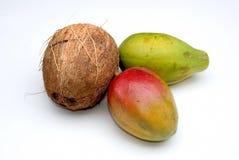 Kokosnuss, Mangofrucht und Papaya Stockbilder