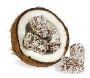 Kokosnuss mit Schokoladenkuchen Stockfotografie