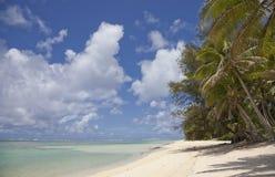Kokosnuss-Palmen auf tropischem Strand Lizenzfreies Stockfoto