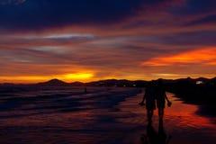 Kokosnuss-Traumflur - Sun getrunken Stockfotografie