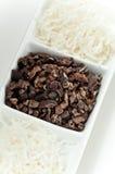 Kokosnuss und Kakao lizenzfreies stockfoto
