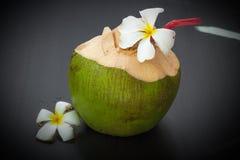 Kokosnuss-Wasser-Getränk Stockbild