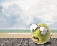 Kokosnussabnutzungssonnenbrille neben Strand Lizenzfreies Stockfoto