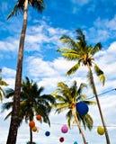 Kokosnussbäume mit mehrfarbigen Ballonen. Stockbild