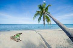 Kokosnussbaum und ein Klappstuhltropisches Luxusstrandsommerparadies Stockfotos