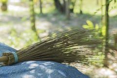 Kokosnussbesenstiel legen vom blauen Blatt nieder Lizenzfreies Stockbild