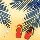 Kokosnussblattschatten warf auf dem Sommerstrandsand Stockfotos