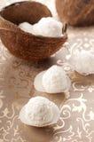 Kokosnussbonbon Stockbilder