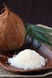 Kokosnusschips und Kokosnuss Lizenzfreie Stockbilder