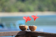 Kokosnussdekoration Lizenzfreies Stockfoto