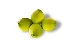 Kokosnussfrucht getrennt Stockbild