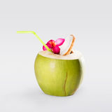 Kokosnussfrucht lokalisiert auf Grau Stockbild