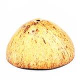 Kokosnussfrucht-Oberteilschnitt zur Hälfte lokalisiert über dem weißen backgrou Lizenzfreie Stockfotos