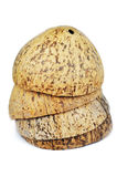 Kokosnussfruchtoberteil Lizenzfreies Stockbild