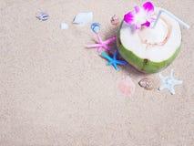 Kokosnussgetränk und -Muscheln auf Sand Lizenzfreie Stockfotografie