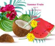Kokosnussgetränkcocktail und -wassermelone Auffrischungsvektor hintergrund tropischen Blumensommers stock abbildung