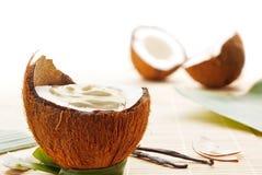 Kokosnusskremeis Stockfotografie