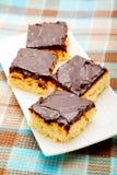 Kokosnusskuchen mit Schokolade lizenzfreie stockfotografie