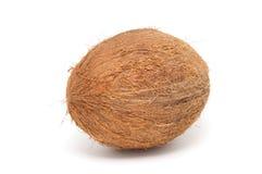 Kokosnussnahaufnahme getrennt auf einem weißen Hintergrund. Stockfoto
