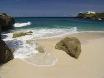 KokosnussPalme am Strand von Moorea, haarscharfer Türkis-blauer South- Pacificozean Lizenzfreie Stockfotografie