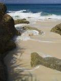 KokosnussPalme am Strand von Moorea, haarscharfer Türkis-blauer South- Pacificozean Lizenzfreies Stockbild