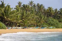 KokosnussPalmen und hölzerne Boote auf dem Sand setzen auf den Strand Lizenzfreie Stockfotografie