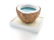 Kokosnussparadies Seashells gestalten auf Sandhintergrund Lizenzfreie Stockbilder