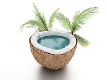 Kokosnussparadies Sommerkonzept auf weißem backgrou Lizenzfreies Stockfoto