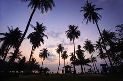 Kokosnussstrand am Sonnenaufgang Lizenzfreies Stockfoto