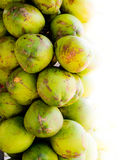 Kokosnussverkauf Lizenzfreie Stockfotos