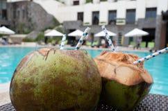 Kokosnusswassergetränk mit Stroh stockfotografie
