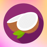 Kokosnusszeichen Cocolebensmittel Ikone Stockfotografie