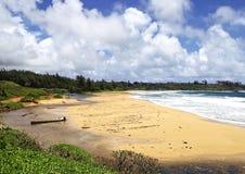 Kokosowa linia brzegowa Wzdłuż Kauai wschodniej części, Hawaje, usa obraz royalty free