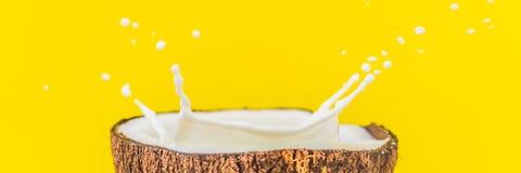 Kokosowa owoc i mleko bryzgamy wśrodku mnie na żółtym tło sztandarze, DŁUGI format fotografia royalty free