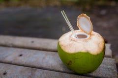 Kokosowa słoma Zdjęcie Stock
