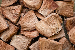 kokosowa sucha skóra Fotografia Royalty Free