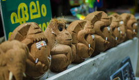 Kokosowa sztuka obrazy stock