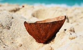 Kokosowa łupa fotografia stock