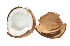 kokosowe świeże skorupy Fotografia Stock