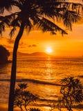 Kokosowe palmy i wsch?d s?o?ca przy tropikaln? pla?? z morzem fotografia stock