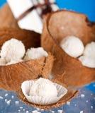 kokosowe trufle zdjęcia royalty free