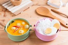 Kokosowego mleka curry'ego rybia i rybia piłka z tajlandzkim ryżowym kluski Fotografia Royalty Free