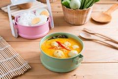 Kokosowego mleka curry'ego rybia i rybia piłka z tajlandzkim ryżowym kluski Obraz Stock